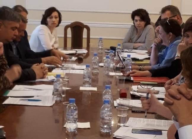 Представитель АРДИП Светлана Шуллер приняла участие в рабочем заседании Минтруда по социальной защите детей-инвалидов АРДИП