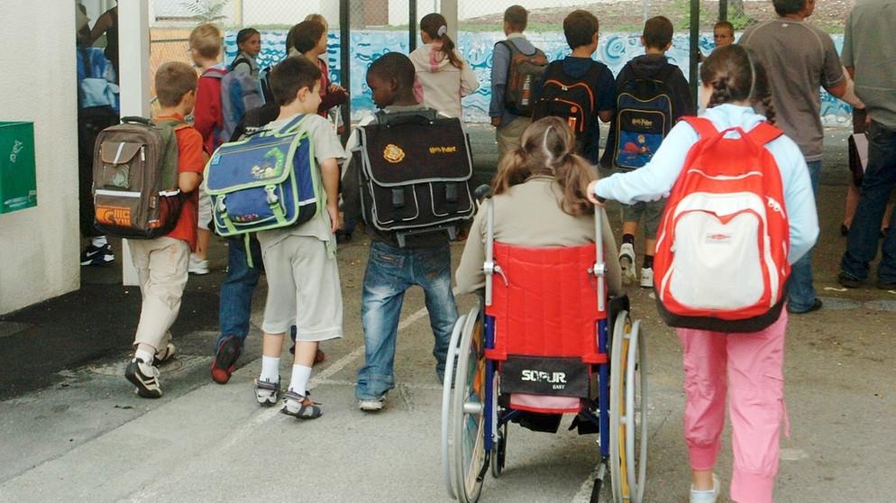 Работа Комиссии АРДИП по образованию, сентябрь-октябрь 2020 г. АРДИП